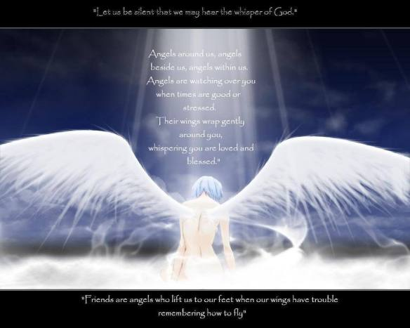 Angel-Quotes-yorkshire_rose-19569034-1024-819