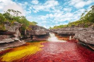 Cano+Cristales+River+Colombia