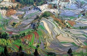 Yuanyang+County
