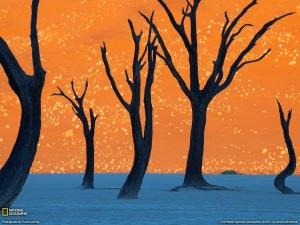 Deadvlei+Namibia