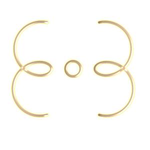 gold_nion