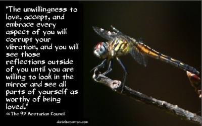 dragonfly111216