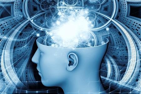 brainconsciousness